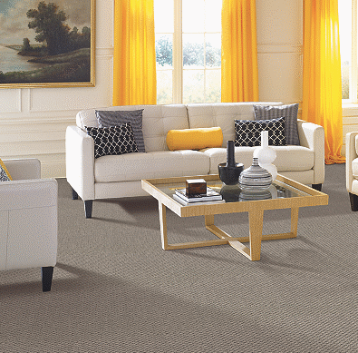 Regina Hardwood Flooring Center Carpet 12' Wide / Carpet / Pad / Installation Urban Studio - Carpet