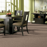 Regina Hardwood Flooring Center Carpet Carpet / Pad / Installation Bayfront - Carpet