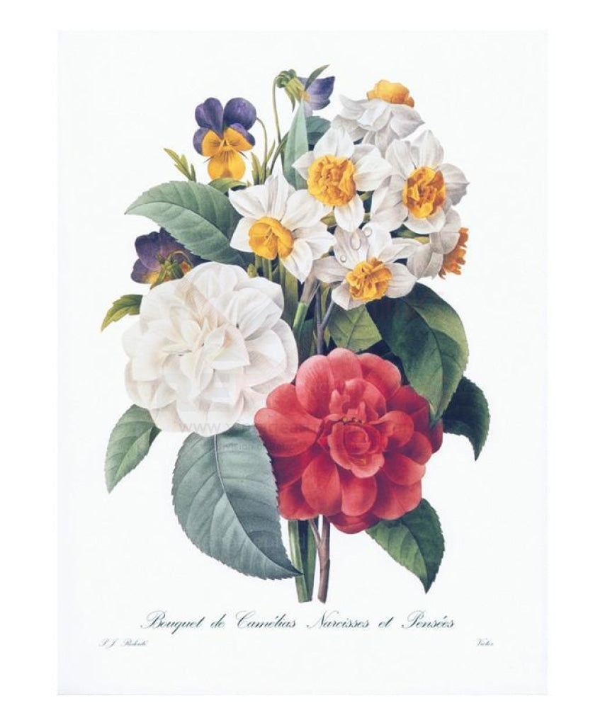 Bouquet de Camelias Narcisses et Pensees, Art Print - Vintage Art, canvas prints