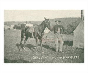 Gimlet the war horse of the Potomac - Vintage Art, canvas prints