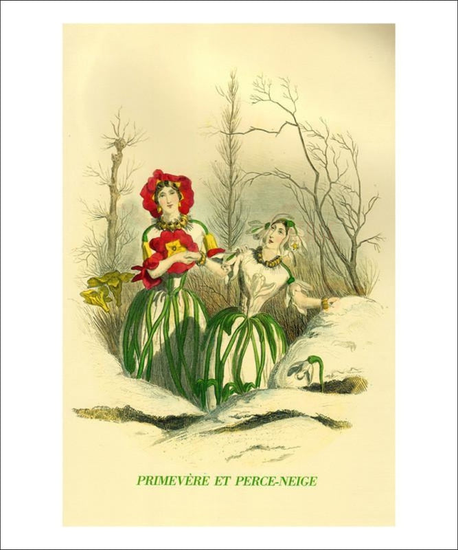 Primevere et Perce-Neige - Vintage Art, canvas prints