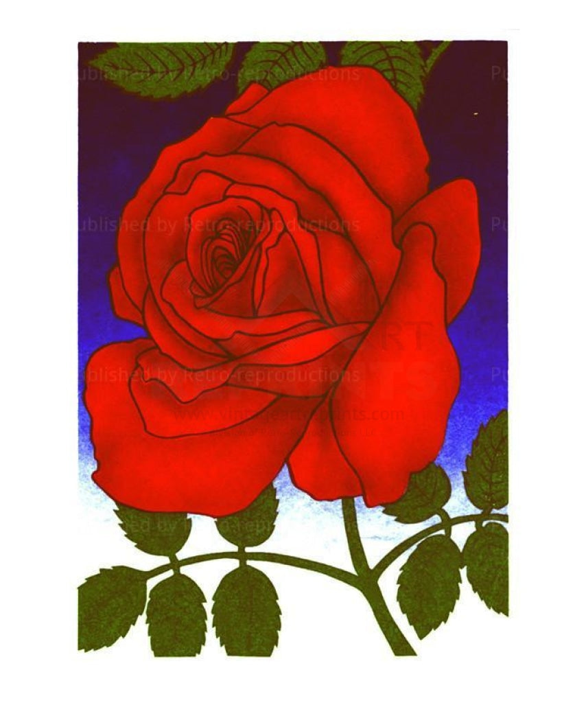 Red Rose - Vintage Art, canvas prints