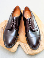 Alden Straight Tip Blucher in Color #8 Shell Cordovan