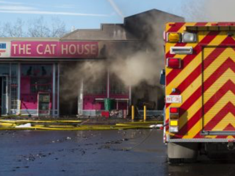 The Cat House Burning