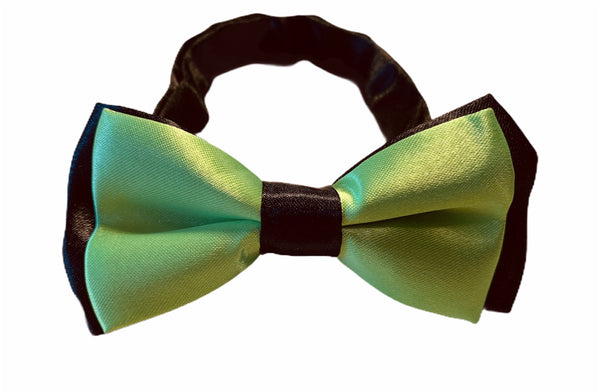 Cat Bow Tie - green 1