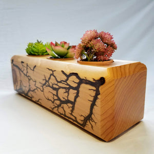 Cedar Geomteric Triple Planter (Bronze Resin Inlay)