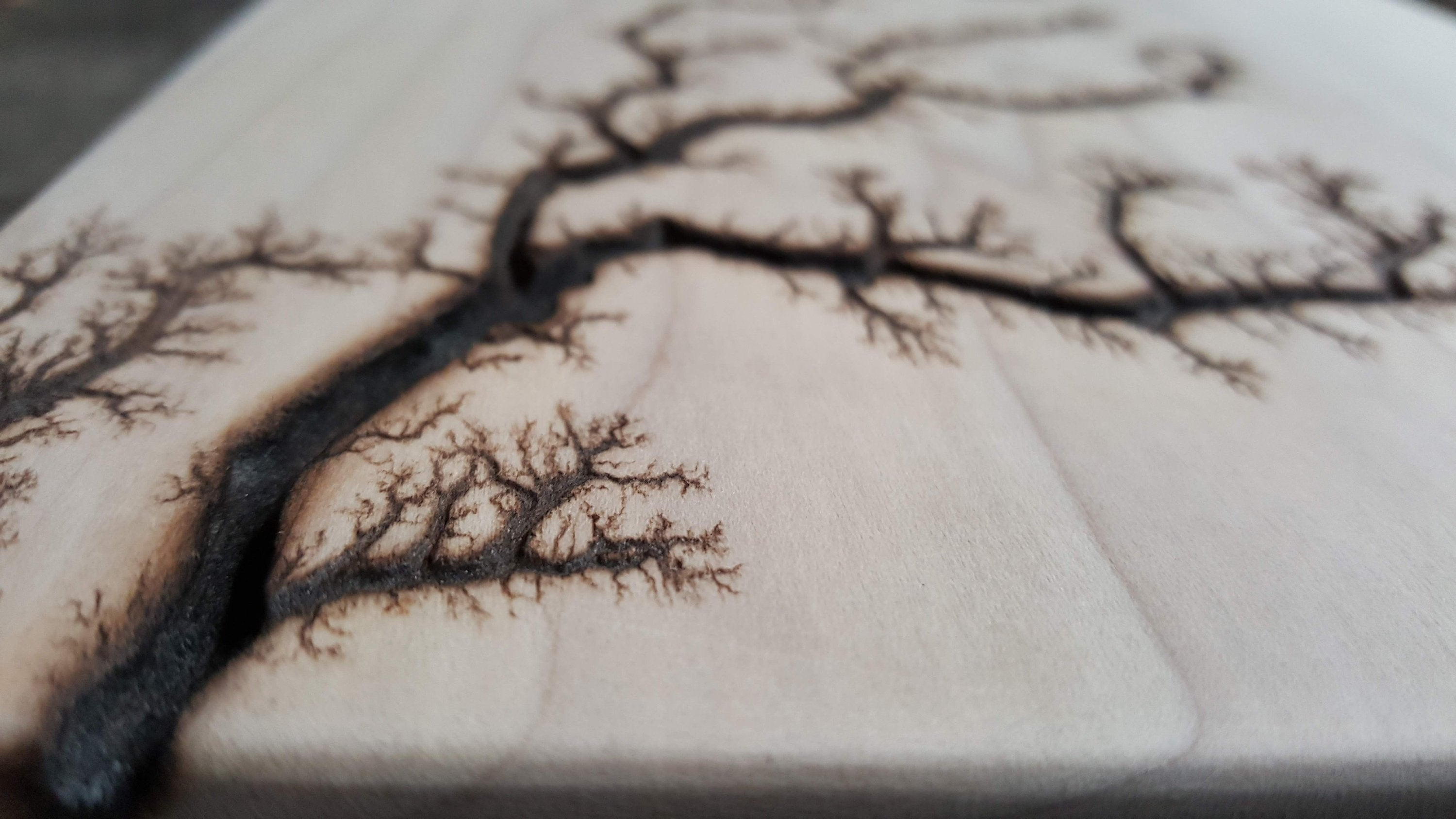 Unfinished Poplar Lichtenberg Wall Hanger