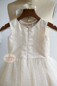 Polka Dot Tulle Dress