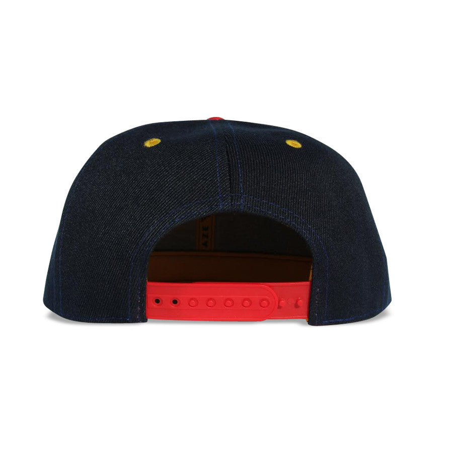 Private Label - 2.0 6 Panel Snapback Hat