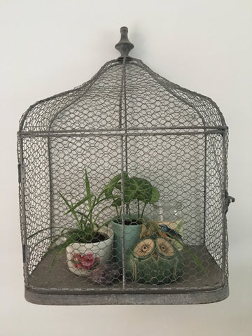 House plants in a bird cage