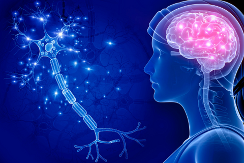 Insomnia and the Nervous System & Health