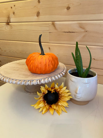 Large {ORANGE} Nubby Mink Velvet Pumpkins!