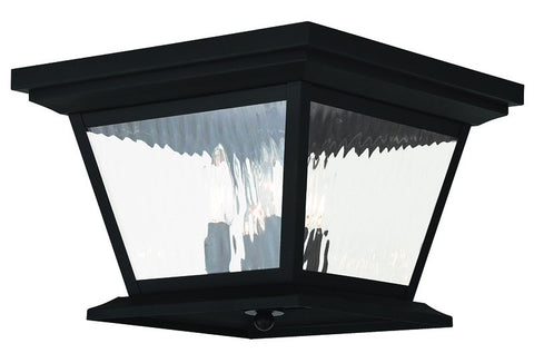 20249-04 Hathaway Outdoor Ceiling Mount Black