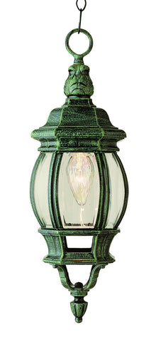 "4065 VG Rochefort 20"" Outdoor Hanging Lantern In Moss"