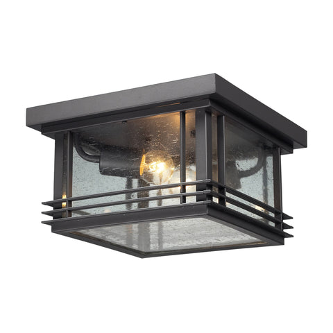 42306/2 Blackwell Outdoor Ceiling Light