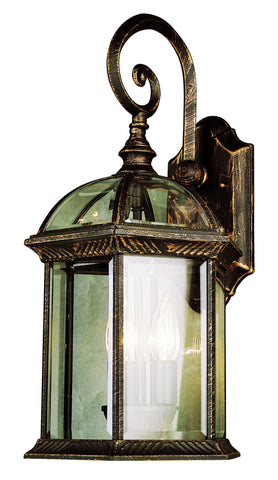"44181 BC Botanica II 19"" Outdoor Wall Light"