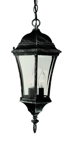 "4505 SWI Summerville 19"" Outdoor Hanging Lamp"