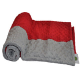 Crimson and gray Signature Minky Blanket