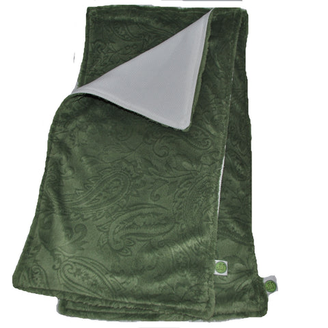 Green Paisley Burp Cloth