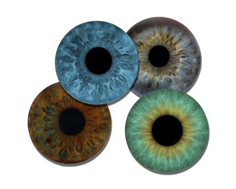 Eyeball Images 4 Piece Unique Coaster Set