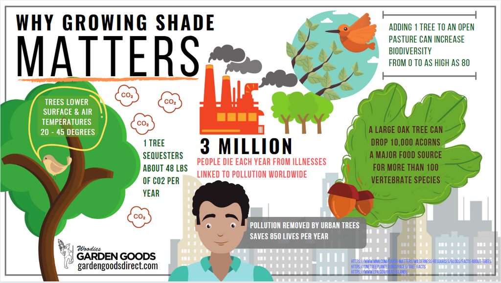 Growing Shade Why It Matters Infographic