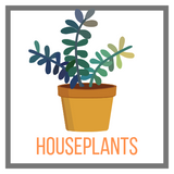 Shop Houseplants Online Garden Goods Direct