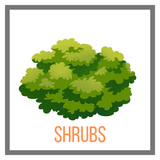 Shop Shrubs Online Garden Goods Direct