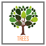 Shop Trees Online Garden Goods Direct