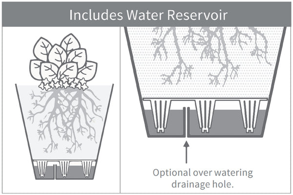 Illustration of the drainage hole below the Noah Self Watering Planter water reservoir