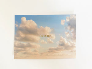 Look Up Postcard Set