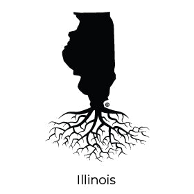 Illinois All