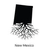 THE NEW MEXICO COLLECTION