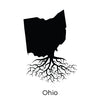 THE OHIO COLLECTION
