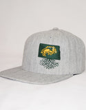 North Dakota State University Flexfit Snapback