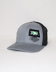 North Dakota University Snapback