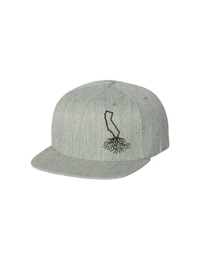 California Roots FlexFit Snapback