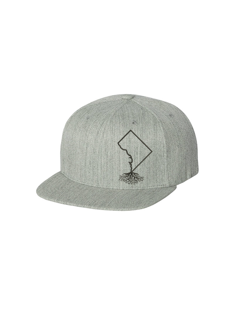 Washington DC FlexFit Snapback