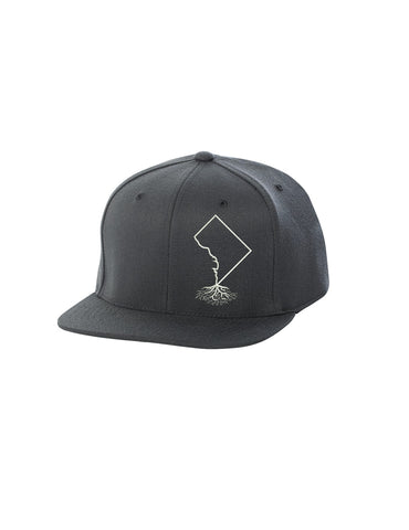 Washington DC Roots FlexFit Snapback