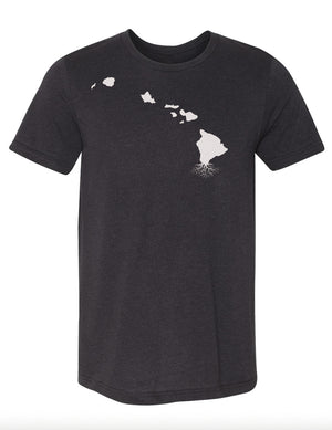 Hawaii Men's Tri-Blend Crew