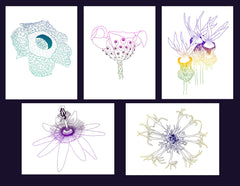Copy of Five Pack of Greeting Cards - Exotic Flowers