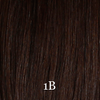 Bohyme Classic Collection Curly Remi Closure 12""