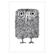 Baby Owl Greeting Card 6-Pack