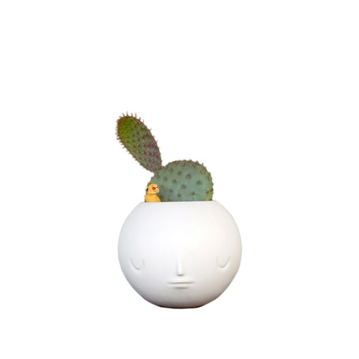 Satin White Pothead Planter