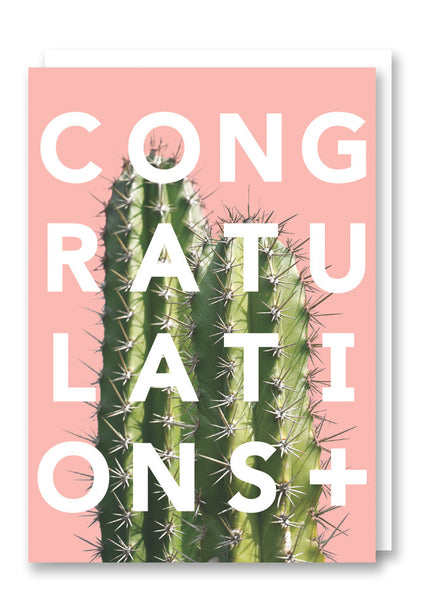 Revista Congratulations Greetings Card Sold in 6's