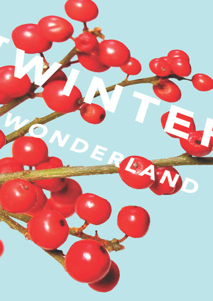 Revista Winter Wonderland Card