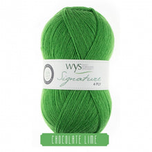 Load image into Gallery viewer, West Yorkshire Spinners Chocolate Lime sock yarn at Eskdale Yarns