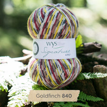 Load image into Gallery viewer, Goldfinch-WYS-sock-yarn-available-at-Eskdale-Yarns-NZ