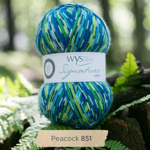 Peacock-WYS-sock-yarn-available-at-Eskdale-Yarns-NZ