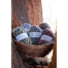 Load image into Gallery viewer, Country-Birds-WYS-sock-yarn-available-at-Eskdale-Yarns-NZ