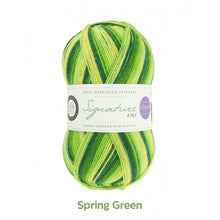 Load image into Gallery viewer, Spring Green by  West Yorkshire Spinners and Winwick Mum at Eskdale Yarns